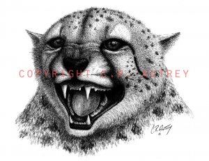 Courage Leopard