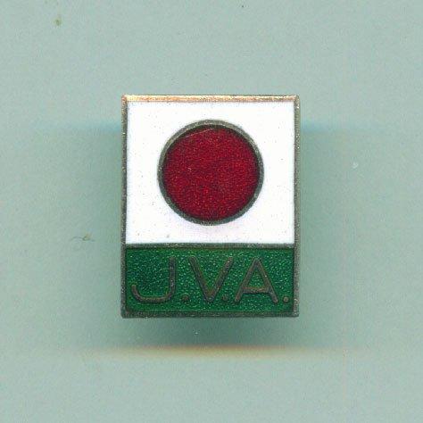 VOLLEYBALL pin JAPAN Association