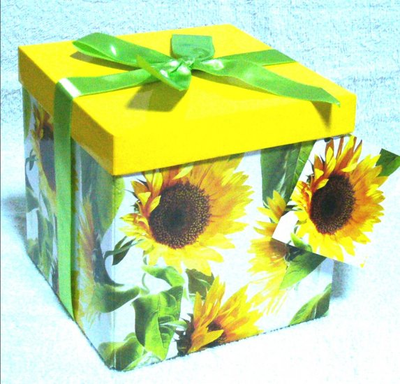 medium box 2