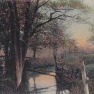 Vintage POSTCARD European Scenic Landscape
