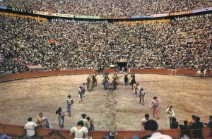 Vintage MEXICAN BULLFIGHT Postcard