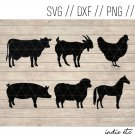 Farm Animals Digital Art File Download (svg, dxf, jpg, png, cut file, template)