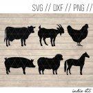 Farm Animals Digital Art File Download (svg, dxf, jpg, png, cut file, template)
