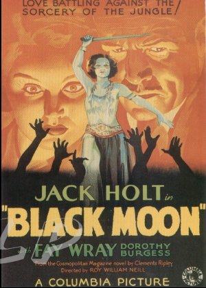 Black Moon DVD (1934) Fay Wray, Jack Holt