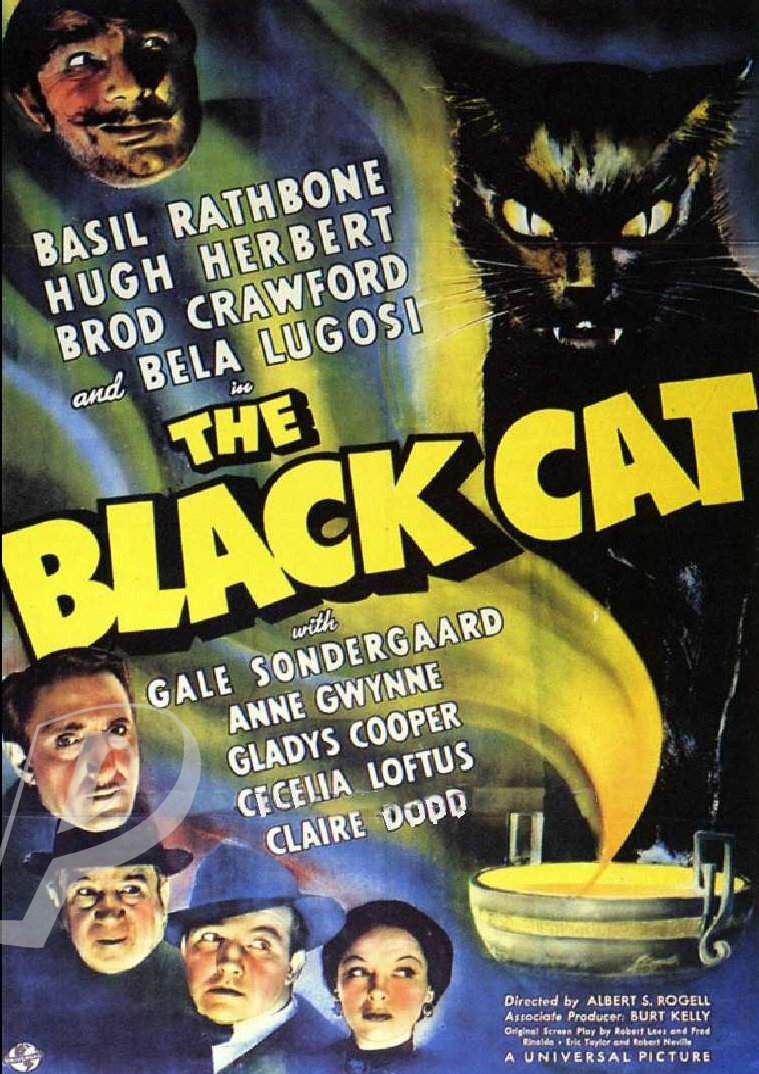 the black cat dvd  1941  bela lugosi  basil rathbone