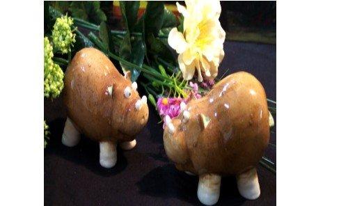 """Enesco """" Home Grown Hippo Salt & Pepper Shakers"""