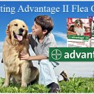 Genuine Advantage II by Bayer for Cats. Up to 10 Month Supply for Flea Control