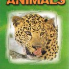Wild About Animals Video Animals Of The Jungle