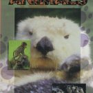 Wild About Animals Volume 3 Video