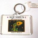 Aquarius Keychain Zodiac Sign Born Jan 21-Feb 18 The Water Bearer