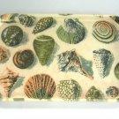 Seashell Tray Rexilite By Eubanks Vintage