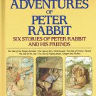 Further Adventures Of Peter Rabbit By Beatrix Potter Six Stories Large Hardcover Book