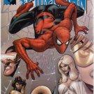 MARVEL KNIGHTS SPIDER-MAN #6