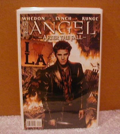 ANGEL AFTER THE FALL #9 �A�   NM(2008)
