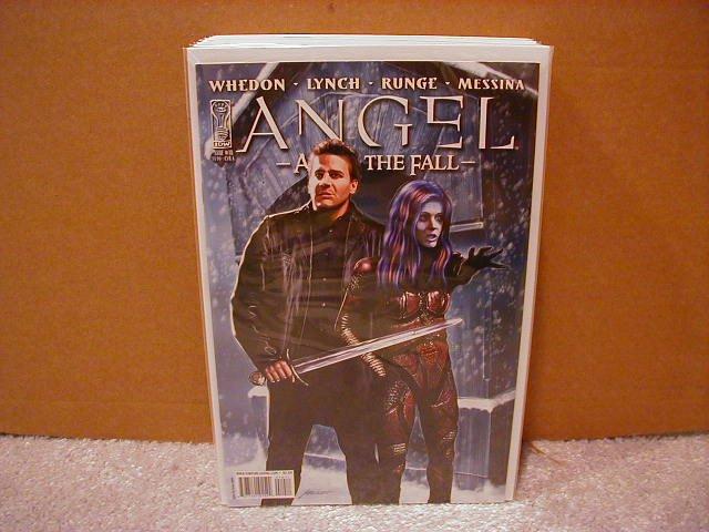 ANGEL AFTER THE FALL #10 CVR �A� (2008)