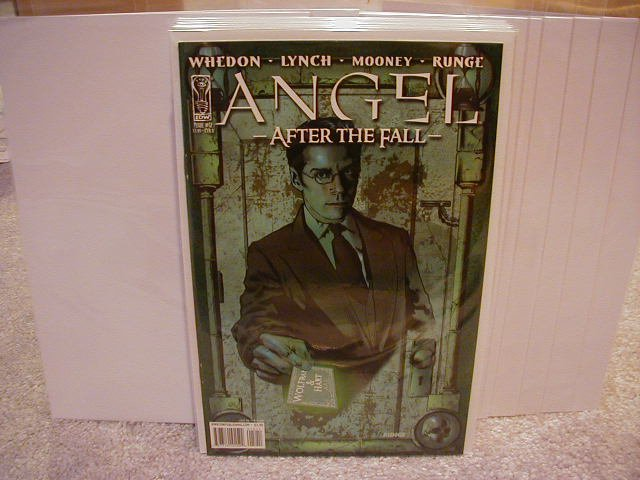 """ANGEL AFTER THE FALL #12 NM(2008) """"B"""" COVER"""