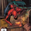 AMAZING SPIDER-MAN #581 NM (2009)