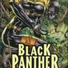 "BLACK PANTHER #1 NM (2009) DARK REIGN-  COVER ""B"""