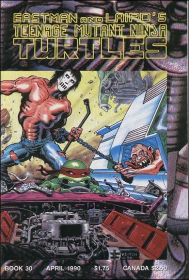 TEENAGE MUTANT NINJA TURTLES VOL 1 #30