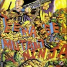 TEENAGE MUTANT NINJA TURTLES VOL 1 #34 VF/NM