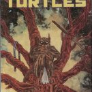 TEENAGE MUTANT NINJA TURTLES VOL 1 #42