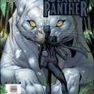 BLACK PANTHER #4 NM (2009)