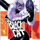 AMAZING SPIDER-MAN PRESENTS BLACK CAT #1 NM (2010)