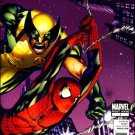 ASTONISHING SPIDER-MAN & WOLVERINE ANOTHER FINE MESS #1  NM (2011)