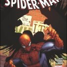 Amazing Spider-Man #674 NM (2011)