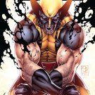 Savage Wolverine 19 [2013] VF/NM *Marvel Now*