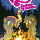 My Little Pony: Friends Forever #3 Tony Fleecs Subscription Variant Cover [2016] VF/NM IDW Comics