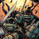 Teenage Mutant Ninja Turtles #60 [2016] Kevin Eastman Subscription Cover VF/NM IDW Comics