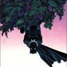 Spider-Man #7 Declan Shalvey Black Panther Variant Cover [2016] VF/NM Marvel Comics