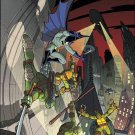 Batman / Teenage Mutant Ninja Turtles #4 Subscription Variant Cover [2017] VF/NM DC IDW Comics