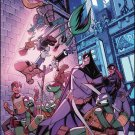 Batman / Teenage Mutant Ninja Turtles #5 [2017] VF/NM DC IDW Comics