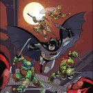 Batman / Teenage Mutant Ninja Turtles #5 Subscription Variant Cover [2017] VF/NM DC IDW Comics