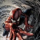 Peter Parker: The Spectacular Spider-Man #1 Mike Deodato Jr Party Cover [2017] VF/NM Marvel Comics