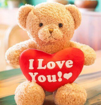 JIA 2019 Valentine Gift - Cuddly Bear Plush Toy with Red Heart
