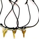 Fossil Shark Tooth Necklace- Black Cord