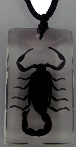 Necklace - Black Scorpion in Clear Lucite Rectangle