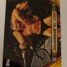 Brock Lesnar 2019 Topps WWE Summer Slam Mr. Summer Slam Insert Card