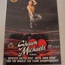 Shawn Michaels 2018 Topps WWE Michaels Tribute Insert Card #29
