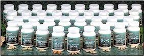 Goldenseal Root 470 mg  (#991R)