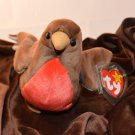 Ty Beanie Baby EARLY 1996 Mint First Robin of Spring 1998 Tush 1997 Swing Tag