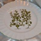 Mikasa Ultra Cream Botany DN002 Dinner Plate Plants