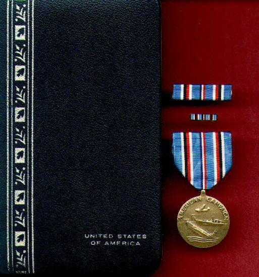 WWII American Campaign medal in case with rb and lapel pin