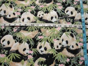 ADORABLE PANDA BEARS ON BAMBOO SHOOTS-ELIZABETH STUDIOS-F/Q-QUILTING-SEWING
