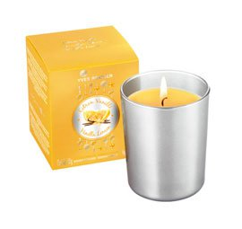 Vanilla Lemon Candle in Silver Holder