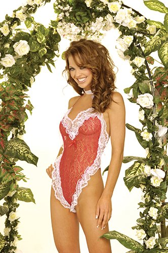 Lace heart body cover, satin bow trim