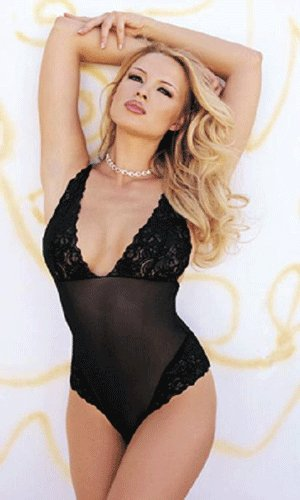 sexy sheer teddy with lace bodice and trim